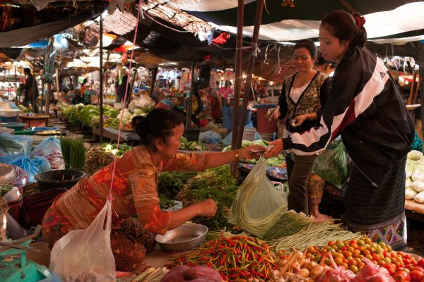Woman shopping for vegetables at market in Laos